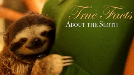 true facts sloth