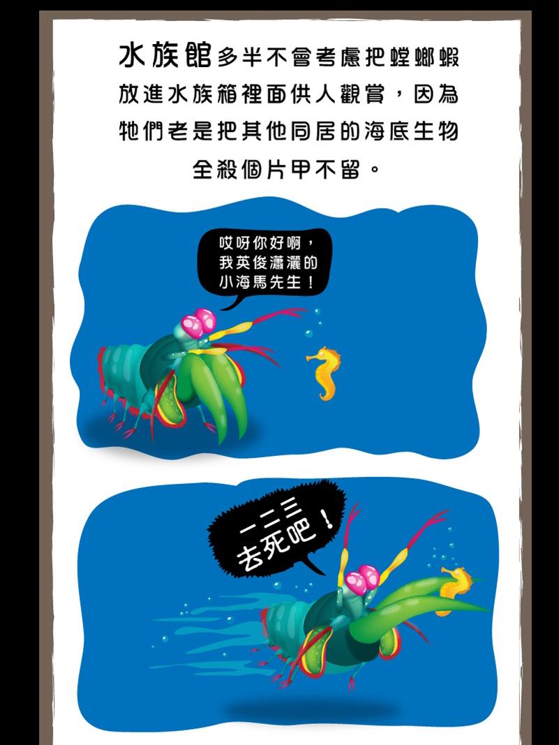 螳螂蝦-10