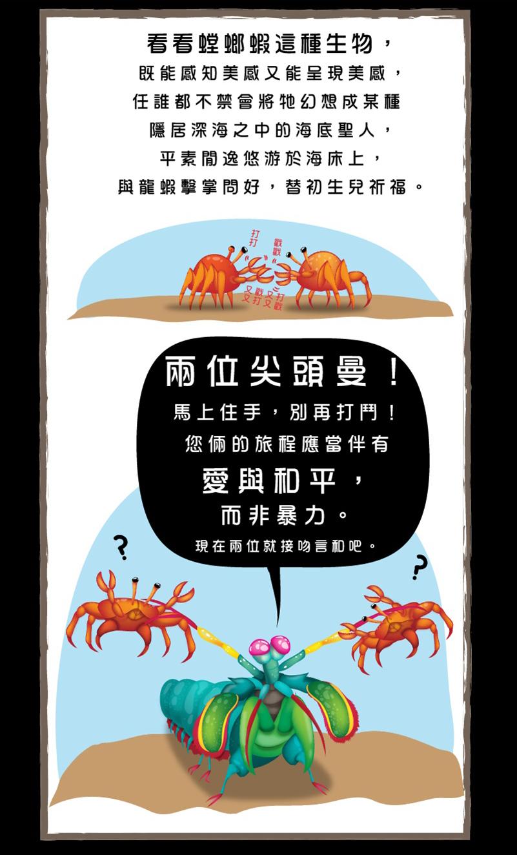 螳螂蝦-6