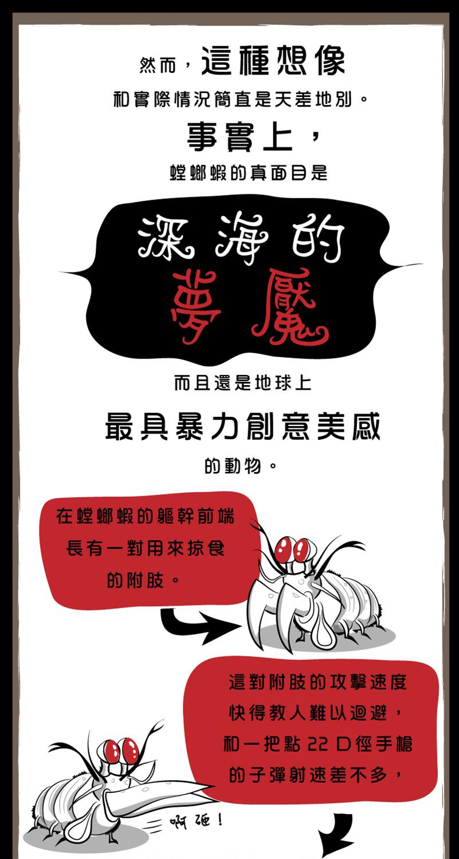螳螂蝦-7