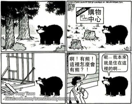 BearMallThere