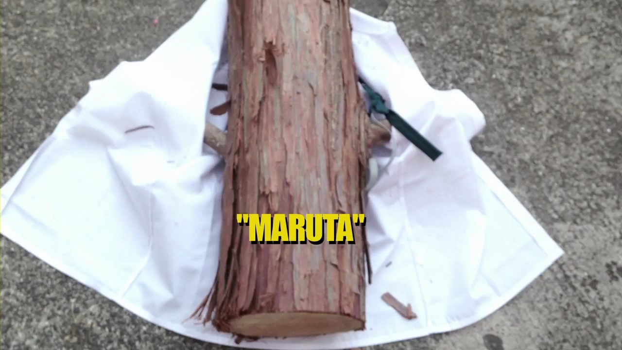 maruta