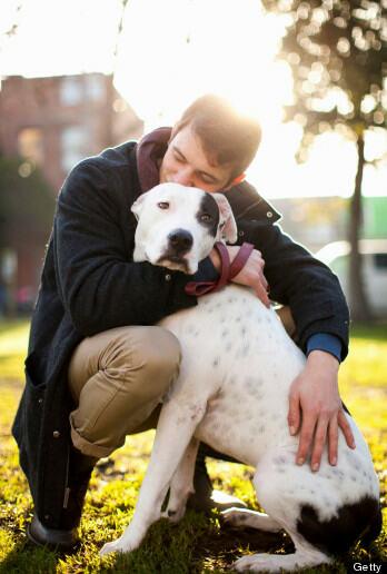h-DOG-HUG-348x516