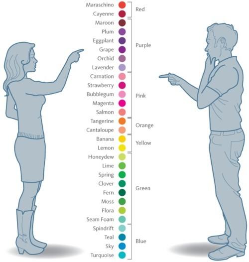 男女辨色力