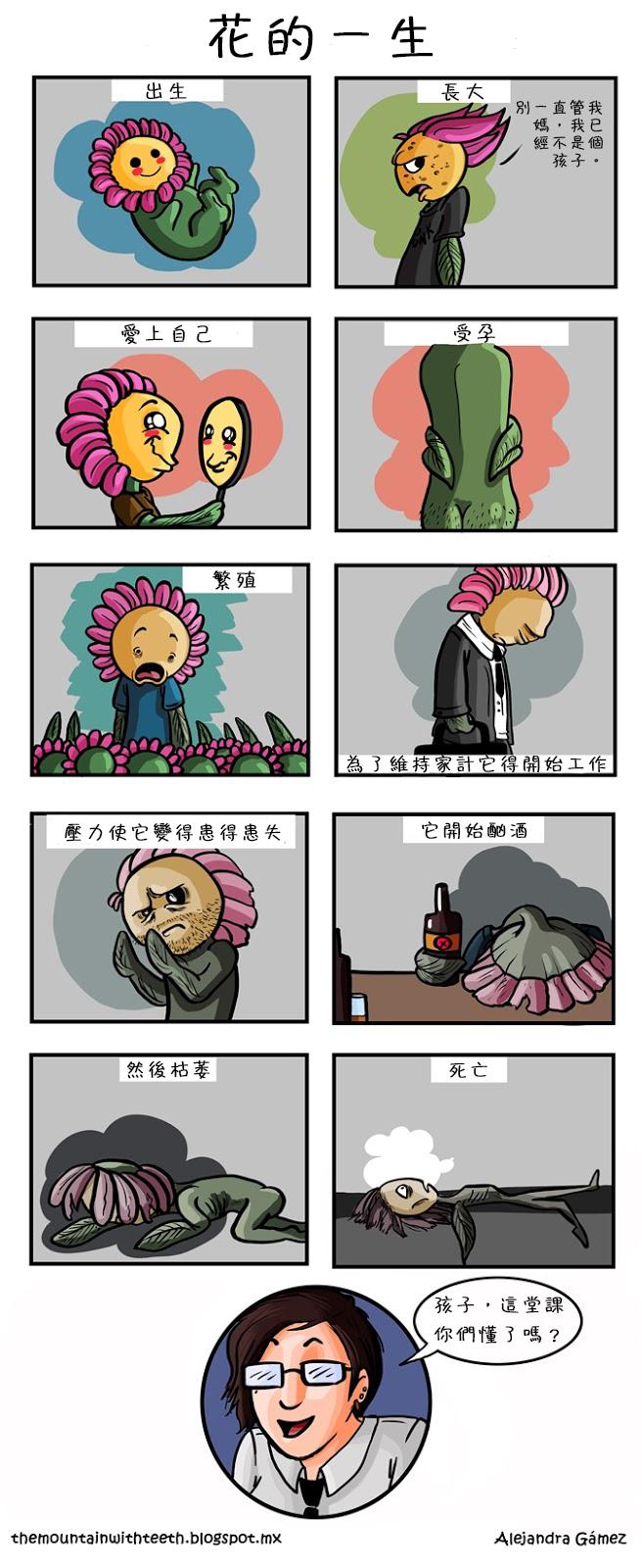 6-花的一生