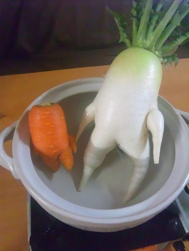 funny-shaped-vegetables-fruits-15-620x