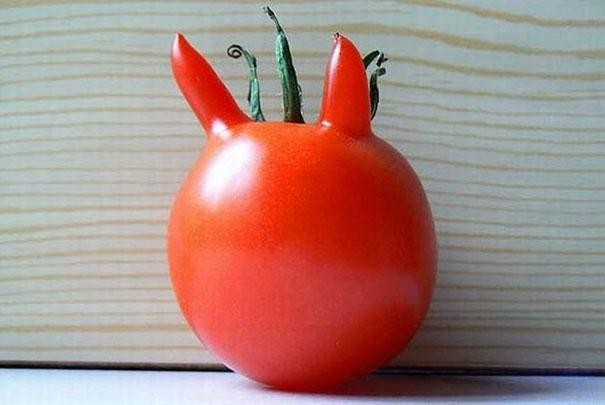 funny-shaped-vegetables-fruits-5-620x