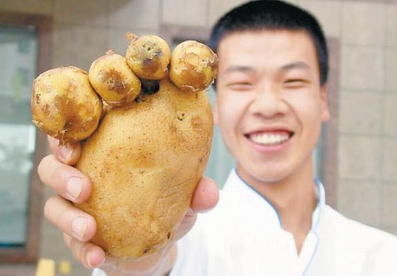 potato-foot-like-620x